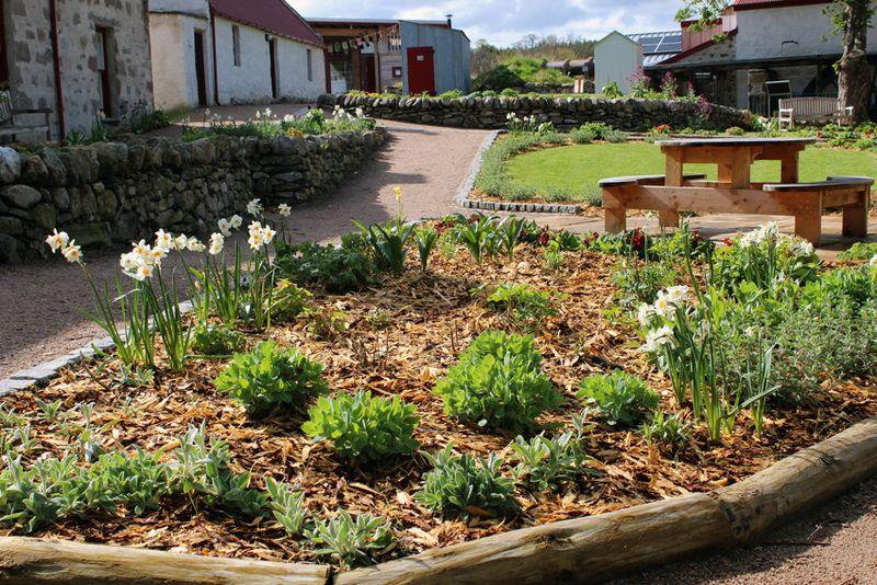Knockando_beechgrove_garden_8