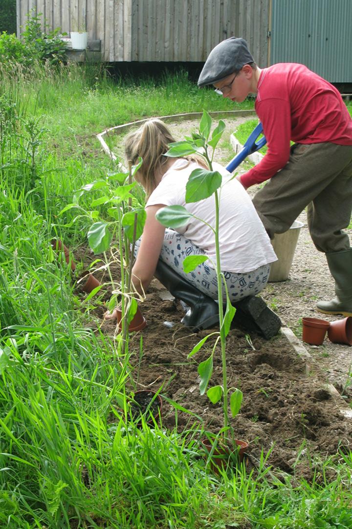 Junior_gardeners_planting